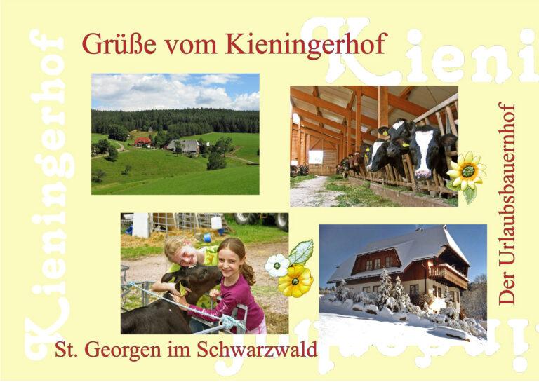 Postkarte Kieningerhof