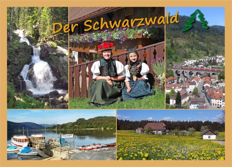 Postkarte Schwarzwald Ocker